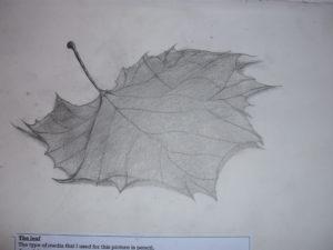 A leaf by jon-green
