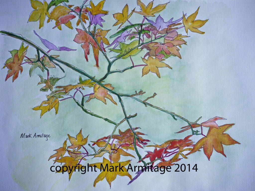 25734 || 4305 || Acer autumnal colours || If you intend to put this work up for sale || 7066