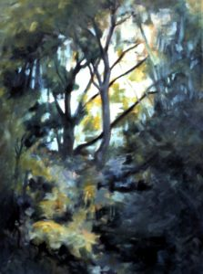 trees and sunlight by Athol Tufnell