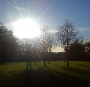 Sunshine and shadows. by Steven Harris