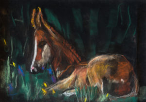 Horse by Terri Avril Winchester