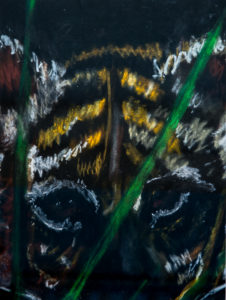 Tiger by Terri Avril Winchester