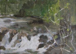 Rheidol Falls by AVERIL CLIFFORD REES