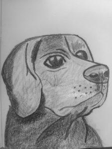 Labrador by Jade's Gallery