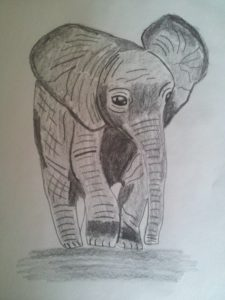 The baby elephant by Jade's Gallery