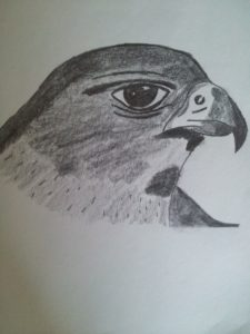 Eagle by Jade's Gallery