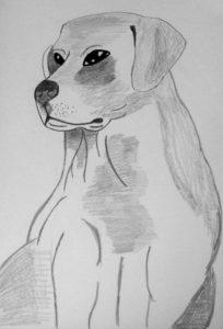 Labrador dog by Jade's Gallery