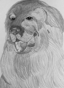 Newflounded Dog by Jade's Gallery