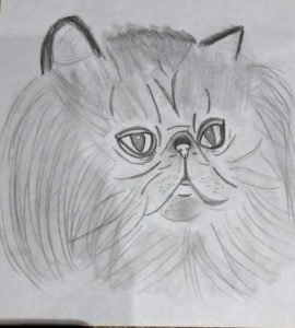 Persain cat face by Jade's Gallery