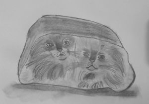 Cats in the Bag by Jade's Gallery