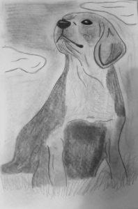Labrador puppy by Jade's Gallery