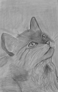Cat portrait by Jade's Gallery