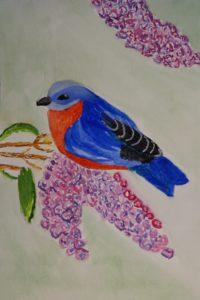 Eastern Bluebird by Jade's Gallery