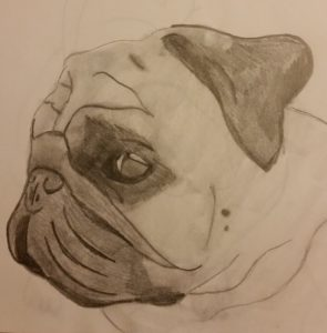 pug side face by Jade's Gallery