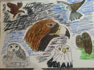 birds by ASTRO
