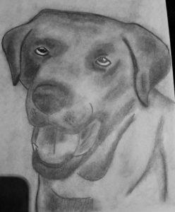 labrador portrait by Jade's Gallery