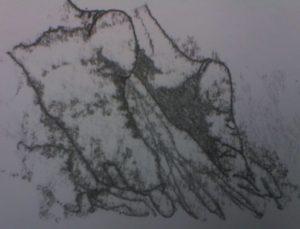 Feet 2005 by LWG