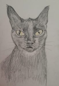 Voodoo portrait by Pet Portrait