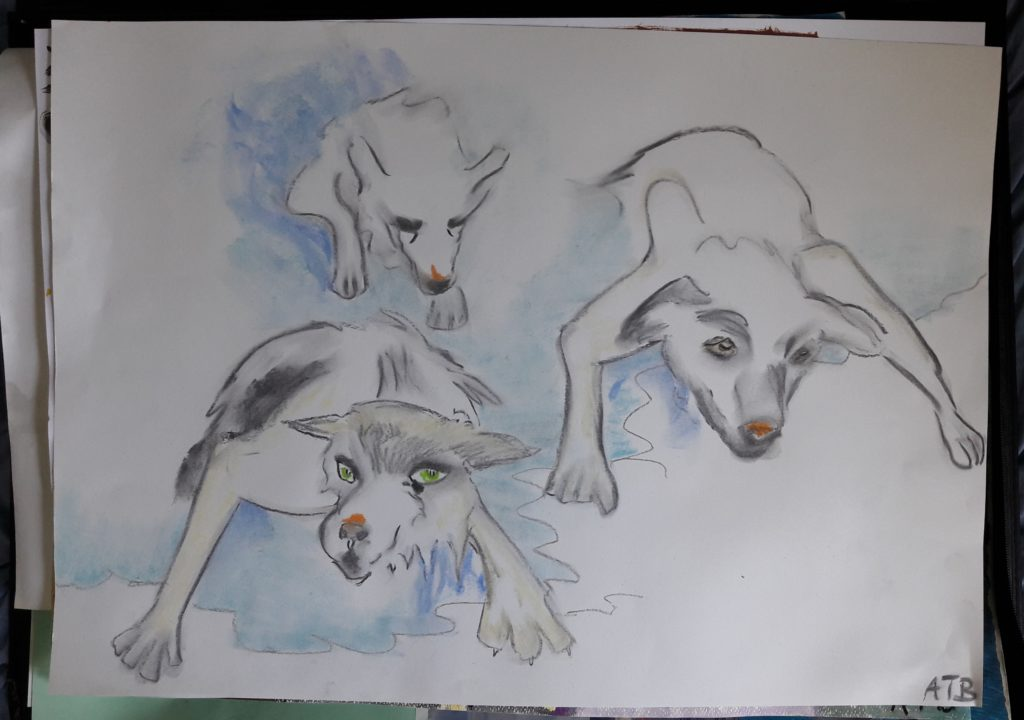 44207 || 5854 || Arctic dogs || NULL || 8337