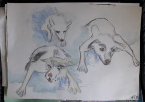 Arctic dogs by Pye