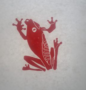 Red frog by tiger in the jungle