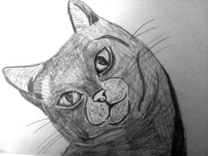 Smiling Cat by Jade's Gallery