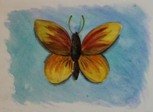 Yellow Butterfly by Camilla Williams
