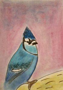 Blue Jay by Jade's Gallery