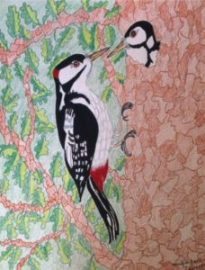 Woodpeckers by Jacqueline  Herbert