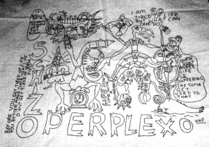 Schizo Perplexo by Valerie Potter