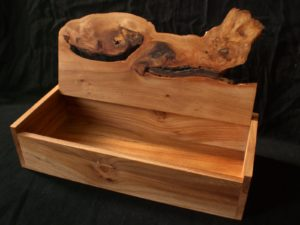 Crouching tiger elm box. by Sue Burbidge