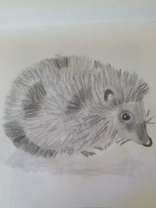 Hedgehog by Jade's Gallery