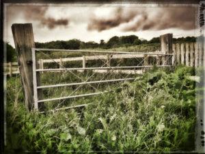 Abandoned Gate by Tony Tomlinson