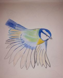Blue tit Flying by Jade's Gallery