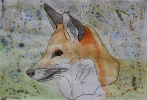 Red Fox by Adz