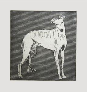 Greyhound by Alice Fletcher