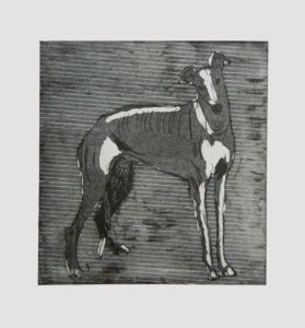 Greyhound 2 by Alice Fletcher