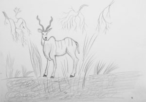 Andy the Antelope by Fergus Cronshaw