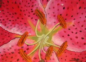 Le Fleur – 2 by susy casillas