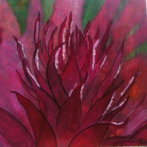 Flower of the Phoenix by susy casillas