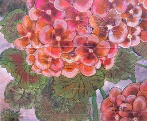 Geraniums by susy casillas