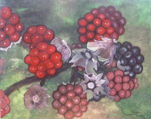 Blackberries by susy casillas