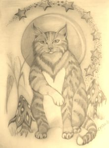 Pooka the Pixie Cat by rachel henderson