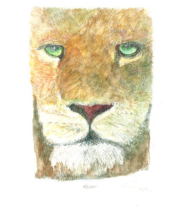 Aslan by Alan Farndon