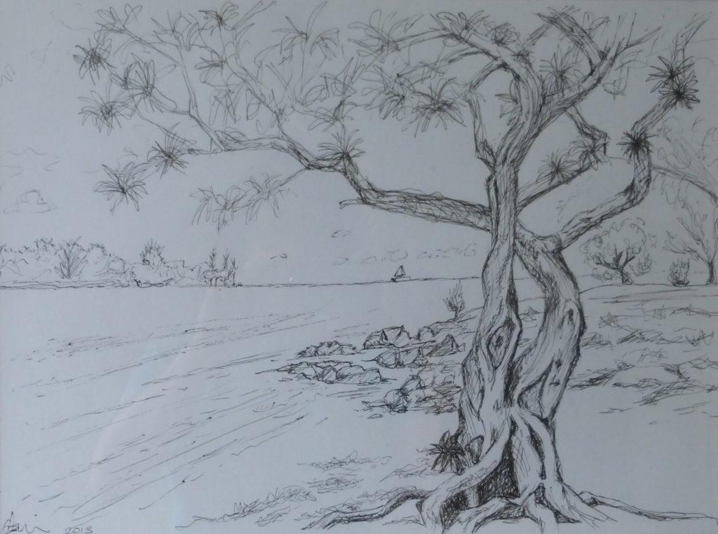 26611 || 4338 || Study 2 Pereybere Beach ||  || 7054