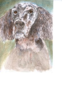 Bertie by Alan Farndon