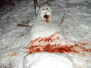 Snow Joke by Antony Cullup