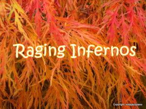 Raging Infernos by Missjazzpiano