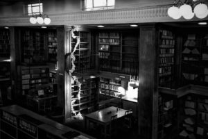 Library Installation by Anna Berry