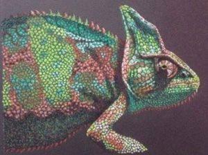 chameleon by Nic Hopkins